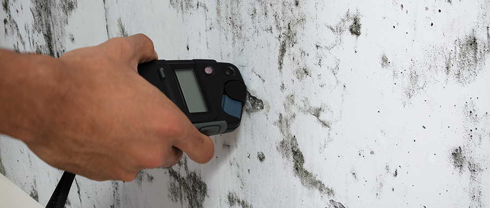 Moisture meter being used bu one of out home inspectors to measure the wetness of a moldy wall